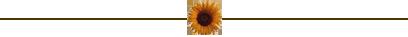 Blumen-Banner