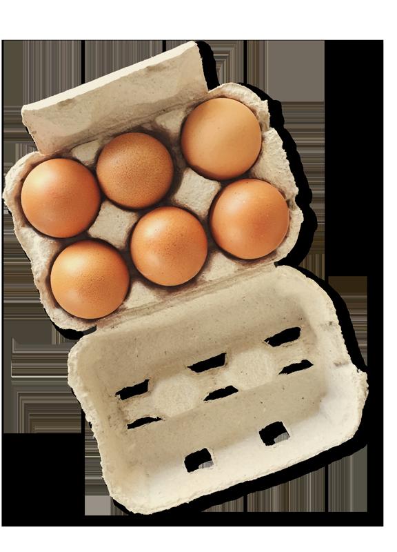 Eierverpackug